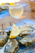 Fresh oysters and a glass of wine — Stockfoto
