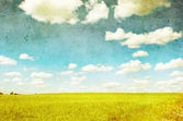 Grunge image of green field and blue sky — Stock Photo