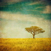 Grunge image of a tree over grunge background — Stock Photo