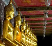 Golden buddhas in wat sutat, bangkok — Stock Photo