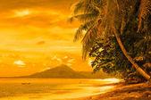Tropical beach, banda islands, indonesia — Stock Photo