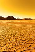 Paisagem do deserto — Fotografia Stock