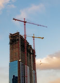 Construction cranes over blue sky background — Stock Photo