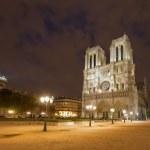 ノートルダム ・ ド ・ パリの夜 — ストック写真