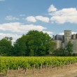 Royalty-Free Stock Photo: Chateau and vineyard in Margaux, Bordeaux, France