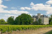 Chateau and vineyard in Margaux, Bordeaux, France — Stock Photo
