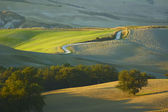 Krajobraz toskanii — Zdjęcie stockowe