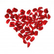 Heart made of rose petals — Stock Photo