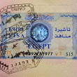 Stock Photo: Passport with egyptivisand stamps