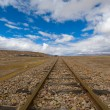 Railroad tracks to nowhere - Lizenzfreies Foto