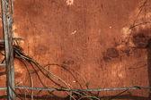 Grunge frame del vecchio muro e rami — Foto Stock