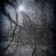 Grunge image of dark forest, perfect halloween background — Stock fotografie