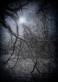 Grunge image of dark forest, perfect halloween background — Stock Photo