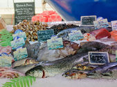 Fresh fish at a fish market in Bordeaux, France — Foto Stock
