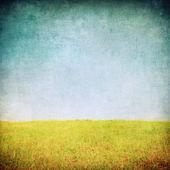 Grunge l'immagine di un campo — Foto Stock