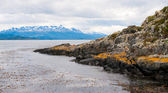 Beagle channel, Patagonia, Argentina — Photo