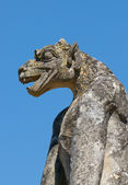 Chimera, medieval gothic architecture — Stock Photo