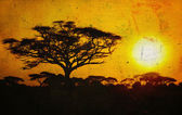 Imagen grunge de un árbol en savannah — Foto de Stock