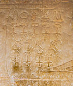 Egyptian hieroglyphics from saqqarah, cairo — Foto de Stock