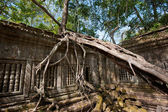 Ruins of Beng Mealea, Angkor, Cambodia — Stock Photo