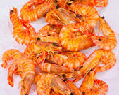 Shrimps at fishmarket — Stock Photo