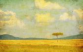Illustrazione d'epoca del paesaggio africano — Foto Stock