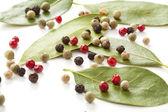 Färgade paprika mix och bay-träd — Stockfoto