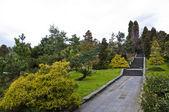 Jardim botânico parque — Fotografia Stock