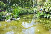 Parku riviera — Zdjęcie stockowe