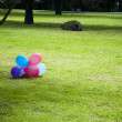 baloon in the green lawn — Stock Photo