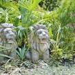 Chinese lion statue in garden — Stock Photo