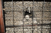 The Sedlec Ossuary — Stock Photo