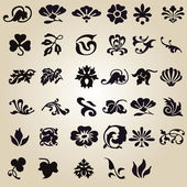 Vector set: calligraphic flower design — Stock Vector