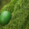 Beautiful green Easter egg — Stock Photo