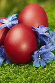 Beautiful red Easter eggs — Stock Photo