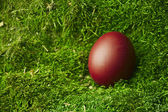 Beautiful red Easter egg — Stock Photo