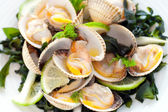 Makro närbild av mussla starter. — Stockfoto