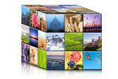 Concept travel cube. — Stock Photo