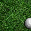 Golf on green - Stock Photo