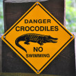 Sign of danger crocodiles — Stock Photo #9382811
