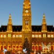 Stock Photo: Town Hall in Vienna