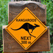 Sign of kangaroos — Stock Photo