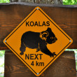 Sign of koalas — Stock Photo