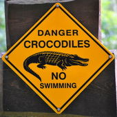 Sign of danger crocodiles — Stock Photo