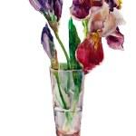 Bouquet of irises watercolor — Stock Photo
