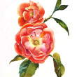 Red dogrose brunch watercolor — Stock Photo #9638603
