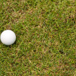 Golf ball on green grass — Foto de stock #10412714