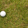 Golf ball on green grass — Stockfoto #10412714