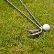 Royalty-Free Stock Photo: Golf ball and golf club sitting in green grass