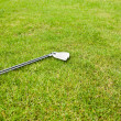 Golf club laying on the grass - Stock Photo